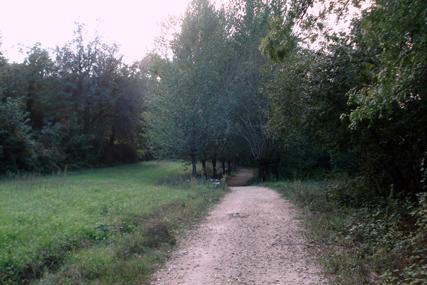 paisagem 12p